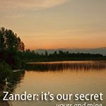 When Buying Products for Skin Health Choose Zander!
